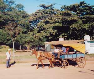 horse cart in Holguín