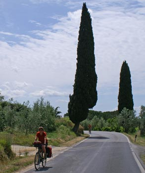 road with cypresses in Tuscany