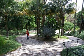 Botanic gardens in Lisbon
