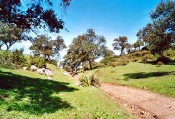path to mulva