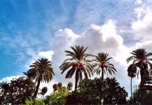 Wolkenluft über dem Alcázar von Sevilla