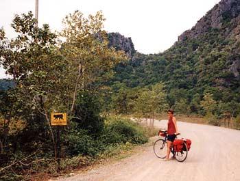 Sign warning for crossing monkeys